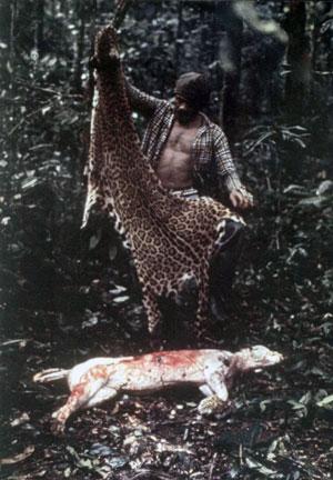 Na célebre reportagem sobre a Amazônia, Jean flagrou um caçador que acabava de tirar a pele da onça, uma de suas fotos mais famosas